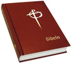 Bild på Bibeln konstskinn normal