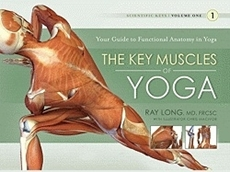 Bild på Key muscles of yoga: your guide to functional anatomy in yoga