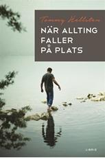 Bild på När allting faller på plats : en bok om att finna mening